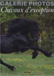 Galerie photo chevaux d exception